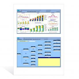 Shareholdervalue-Analyse