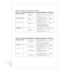 Aide-mémoire Indices caractéristiques d'entreprise