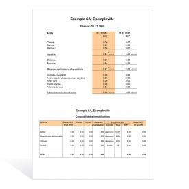 Les comptes annuels selon les nouvelles règles de comptabilité