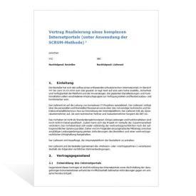 Muster Entwicklung Internet-Projekt