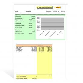 Vorlage Planung und Kontrolle Projektkosten