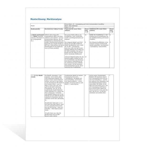 Musterlösung Marktanalyse